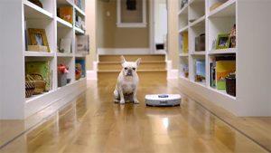 Pet Hair and Robotic Vacuum Cleaner